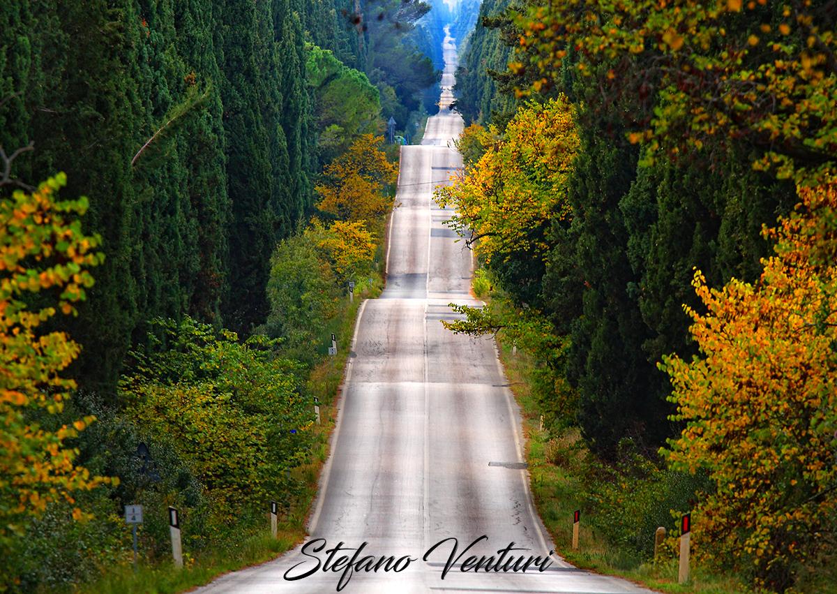 la strada dei cipressi