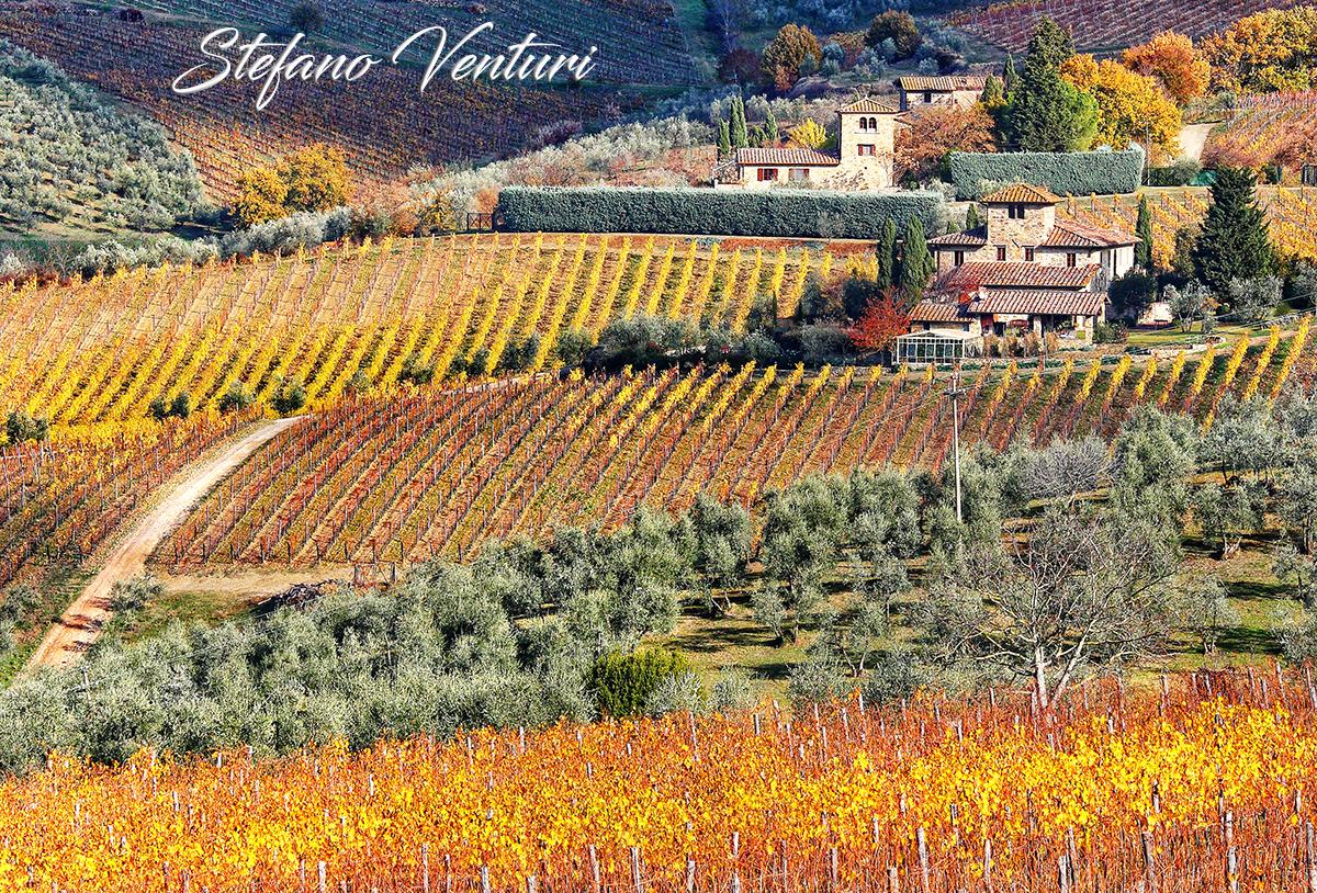 colline del Chianti in autunno