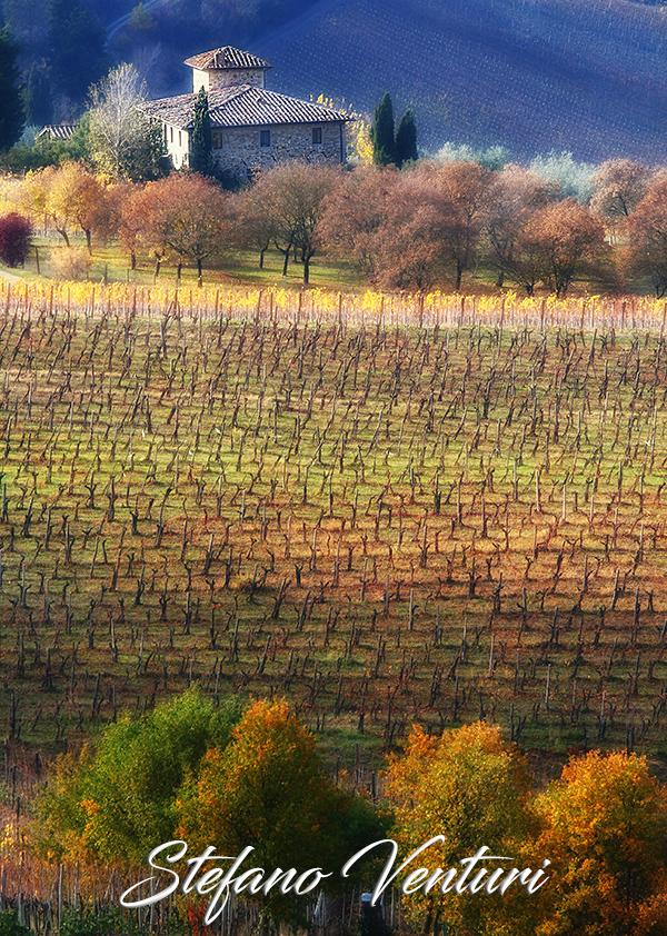 I colori dell'autunno in Toscana