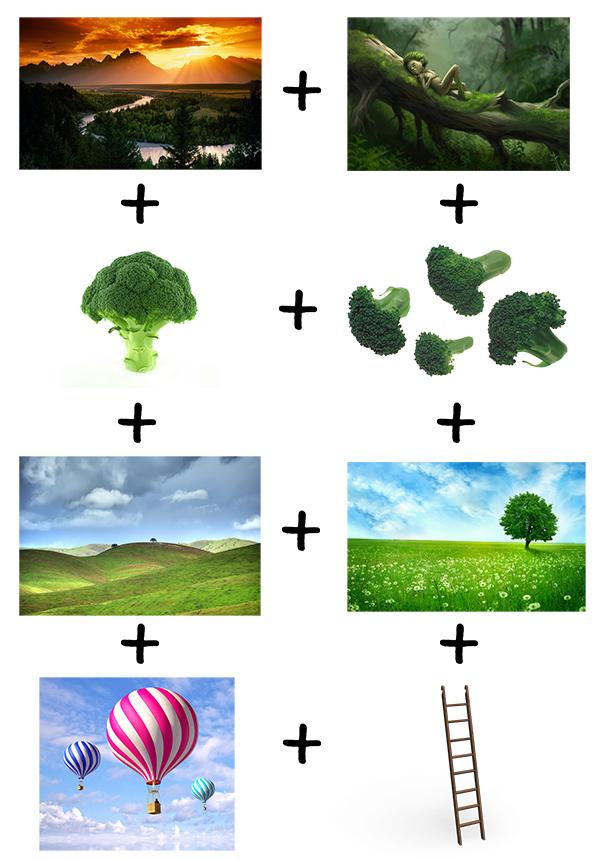 broccolandia
