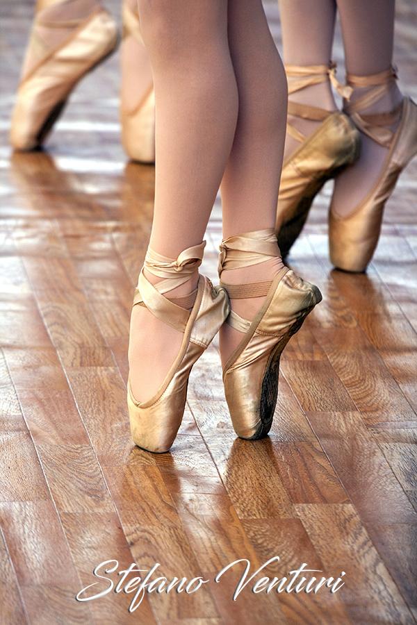 La delicatezza della danza