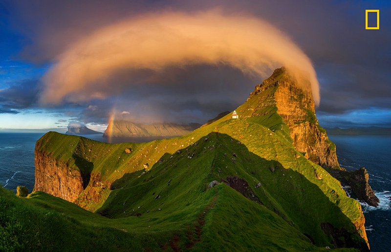 Nature Photographer of the Year 2017