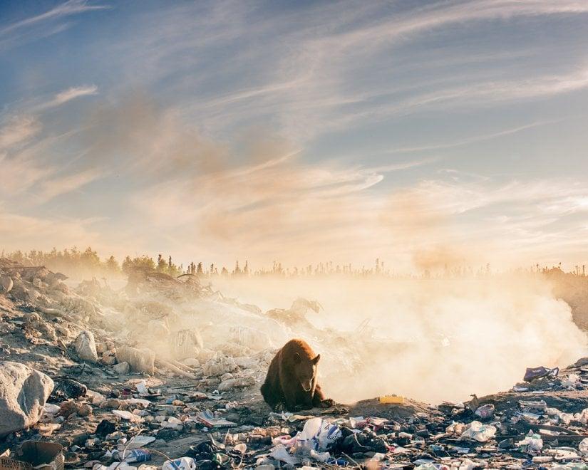 natura contaminata