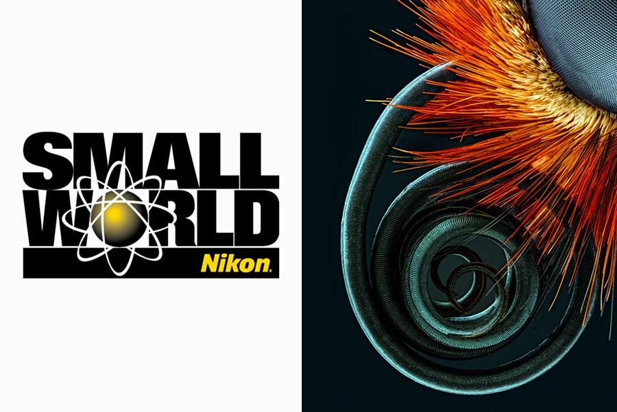 Nikon's Small World