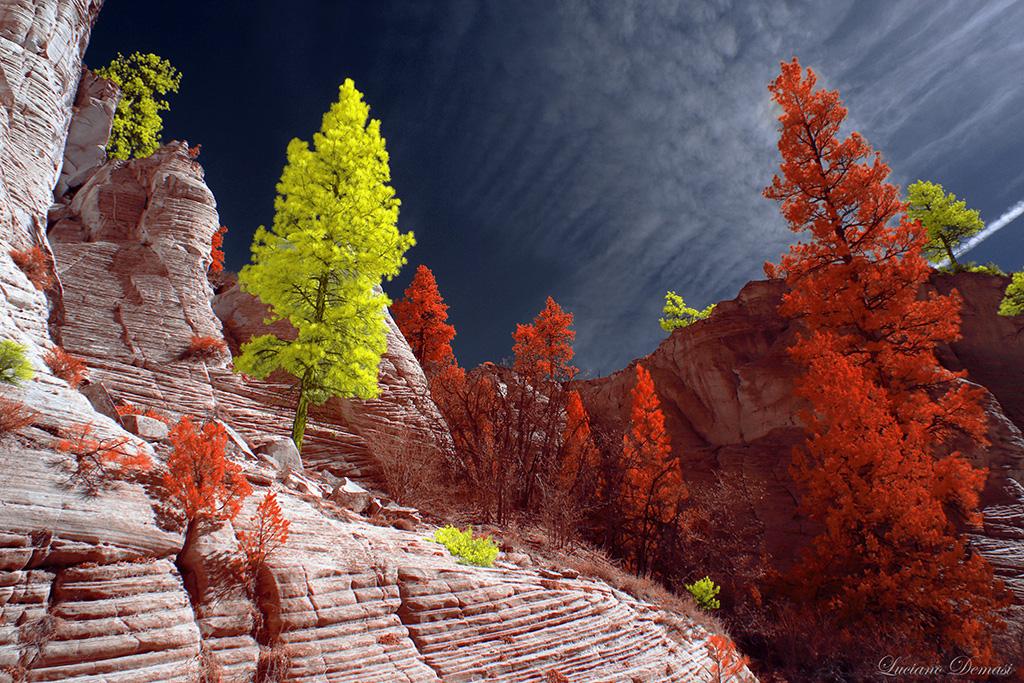 infrarossi