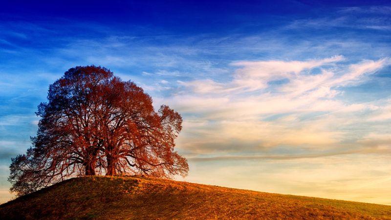 Luce e colore: questo è il segreto per una buona fotografia